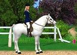 Barbie Aventures Equestres PC-vignette