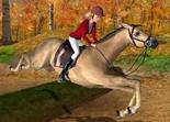 Barbie Cavalière Stage d'Equitation Wii-vignette