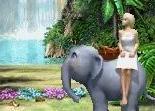 Barbie Princesse de l'Ile Merveilleuse DS-vignette